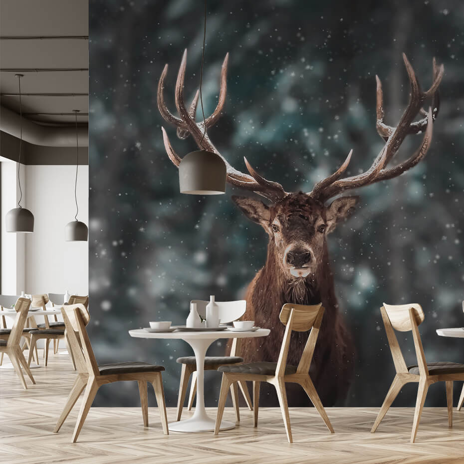 Brectus Photo wallpaper for eateries